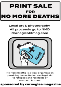 carnegiea lit mag fundraiser for no more deaths